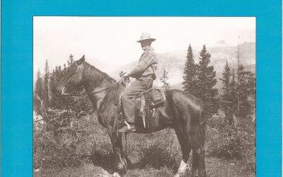 Banff Town Warden 3