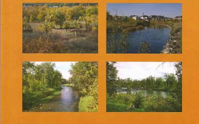 Discover Southeast Calgary's Parks and Green Spaces