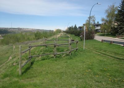 Lions Park Walk 1