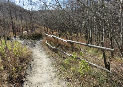 Tuscany Walk 1